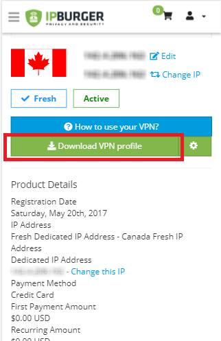 connecting to the VPN
